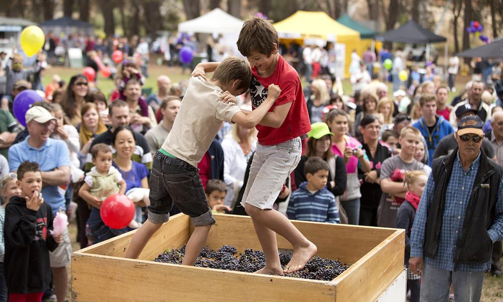 Barossa-Vintage-Festival