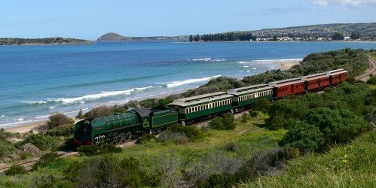 cockle-train