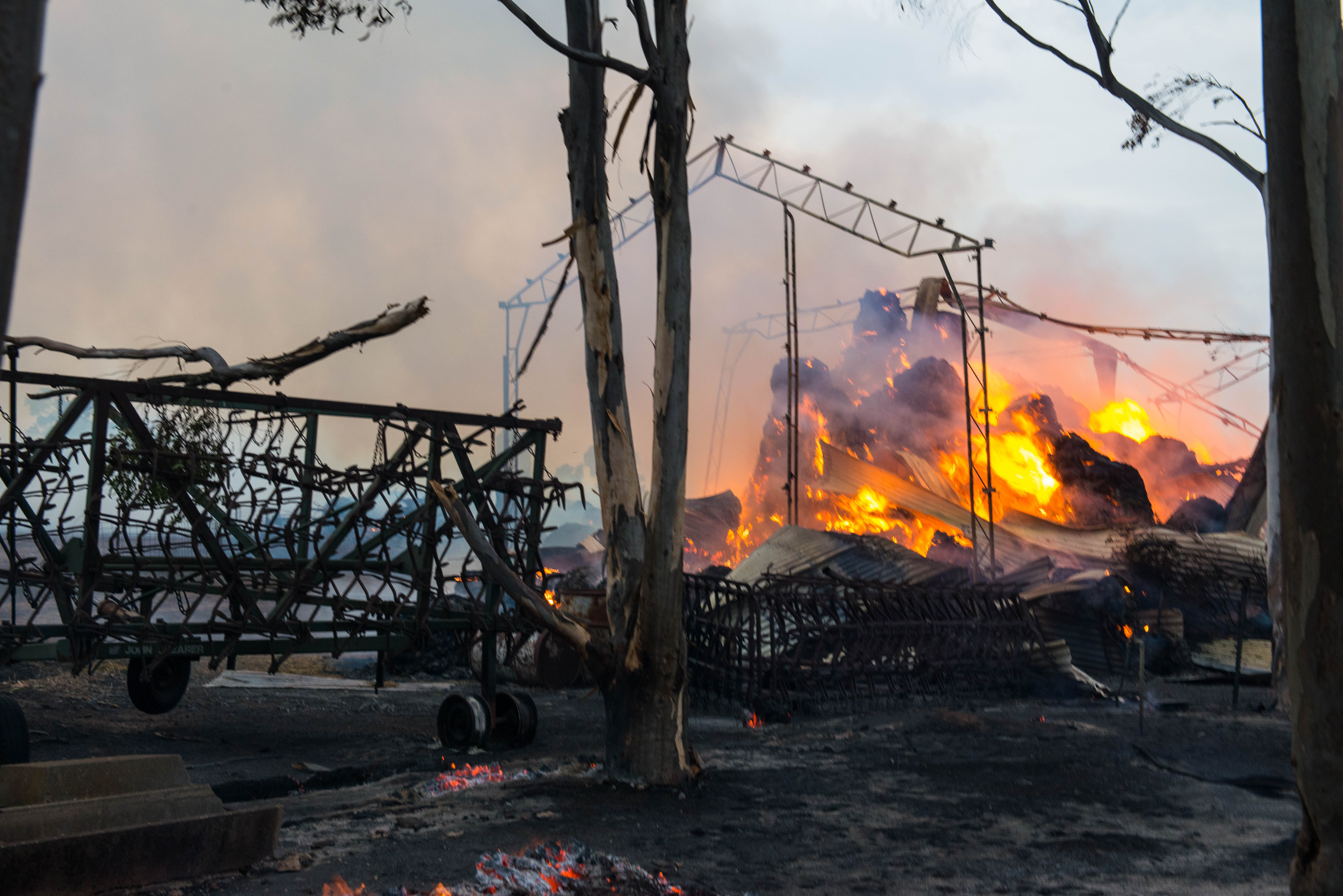 A shed burns at the entrance to Freeling on Wednesday. AAP Image/Brenton Edwards