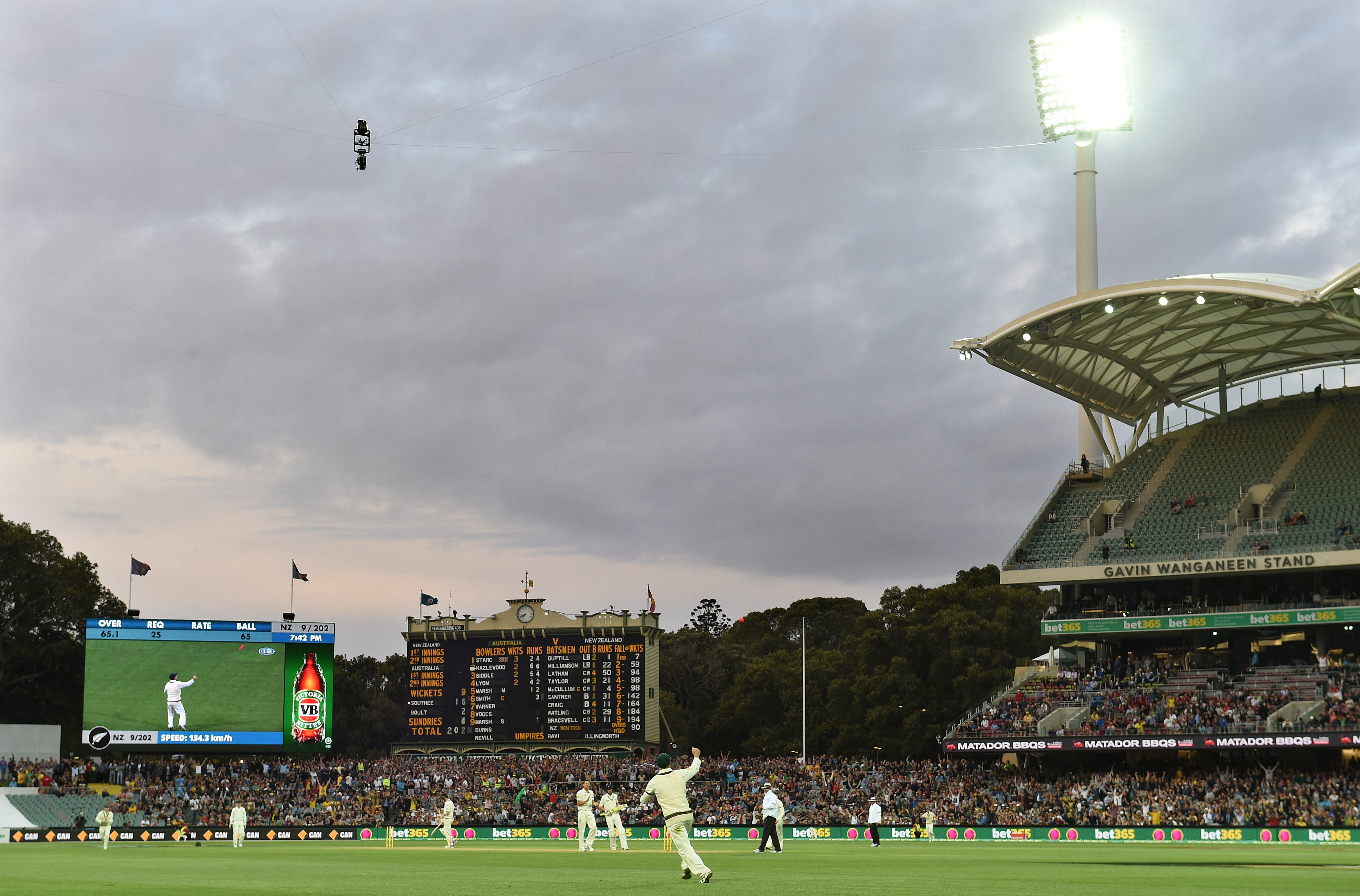 Australia's David Warner (centre) takes a catch at twilight. AAP Image/Dave Hunt