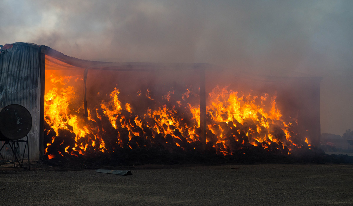 A hay shed burns on a property near Freeling. Photo: AAP / Brenton Edwards.