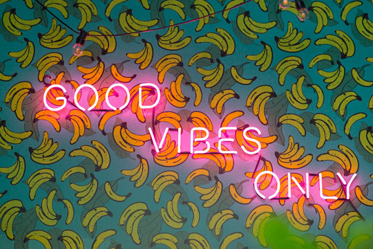 Combi-good-vibes-only
