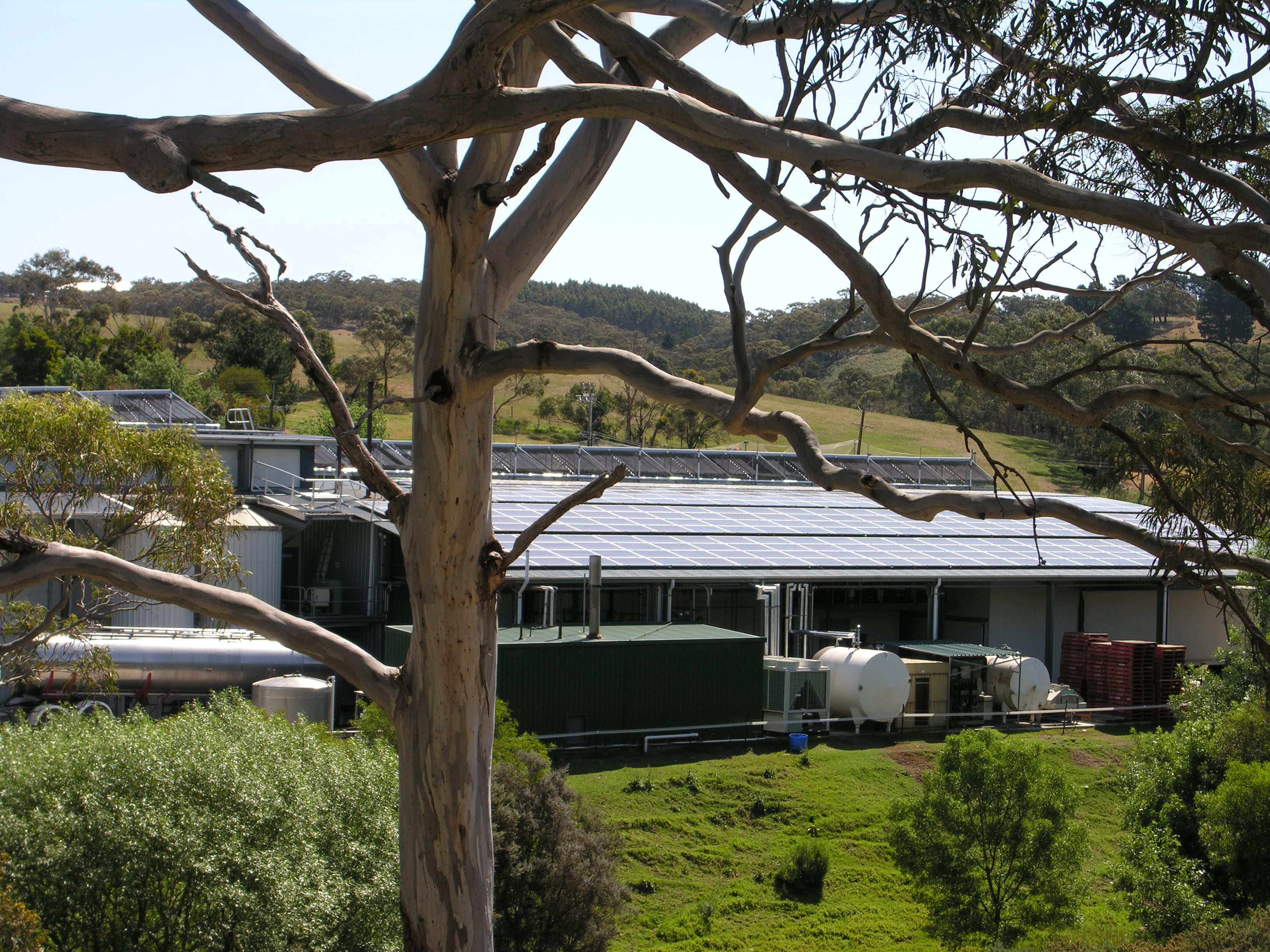 Solar power and hot water at the B.-d. Paris Creek dairy. Supplied photo