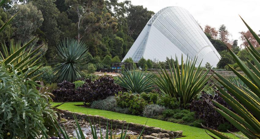 South australia to host major botanic gardens congress for Adelaide gardens