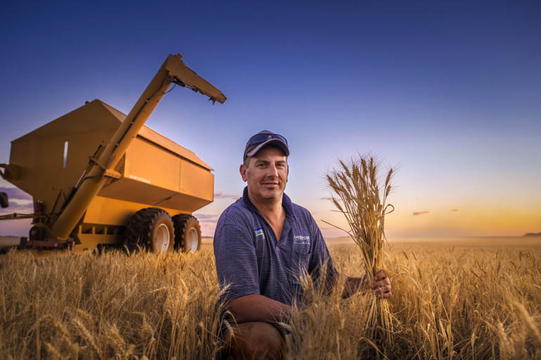 Laucke Flour Mills supports regional grain growers like Alex Hillerman who supply the premium product direct.