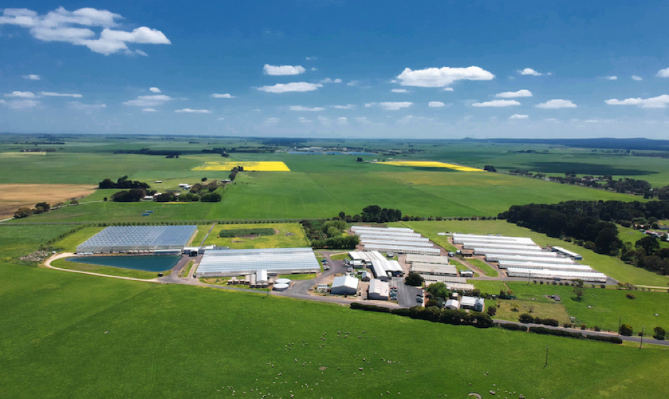 The business, with 3.8 hectares of greenhouses, stretches across 19 hectares at Tantanoola in the South East. Photo by Ockert Le Roux.