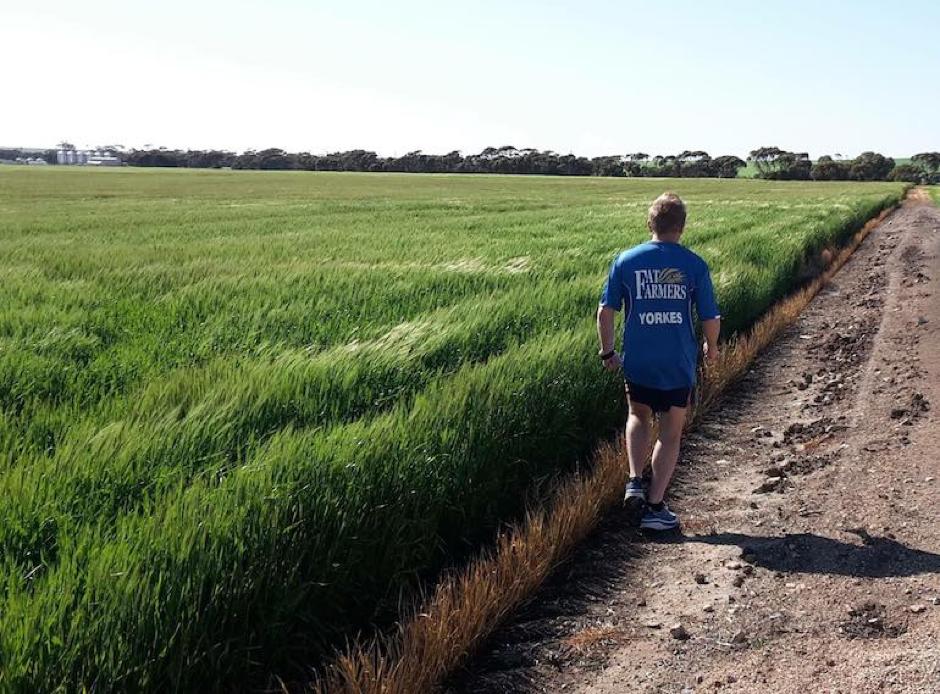 Fat Farmers founding member and Maitland farmer Ben Wundersitz running on his Yorke Peninsula property.
